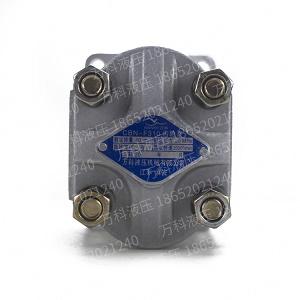齿轮泵CBN-F310